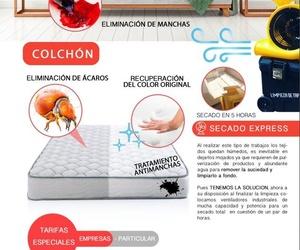 Limpieza y desinfección de tus colchones