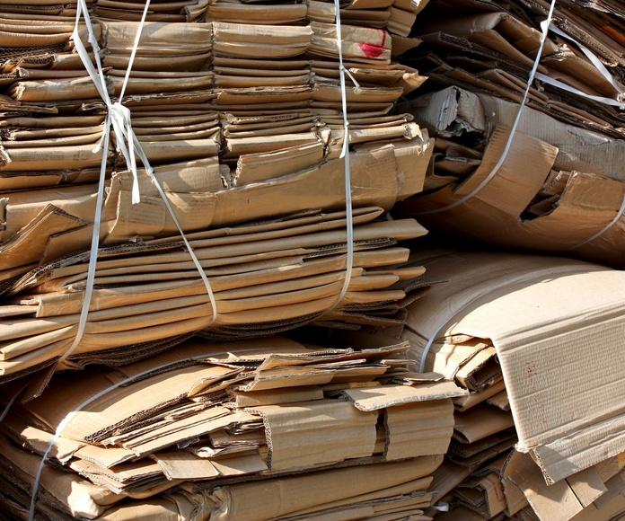 Recogida y venta de cartón y papel: Servicios de Rancón Metales