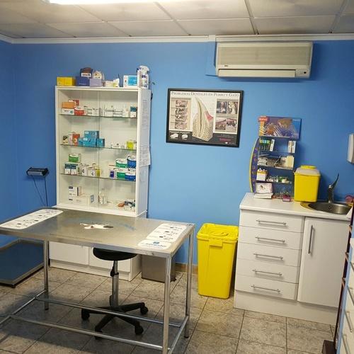 Clínica veterinaria en Albacete