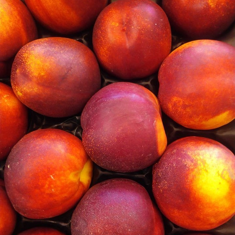 Fruta y Verdura: Nuestros Productos de SELECTUM Gastroplaceres