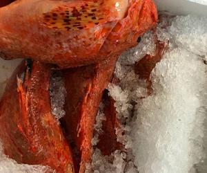Venta y distribución de pescados