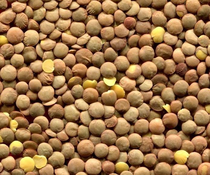 Legumbres: Productos de Frutas Pablos
