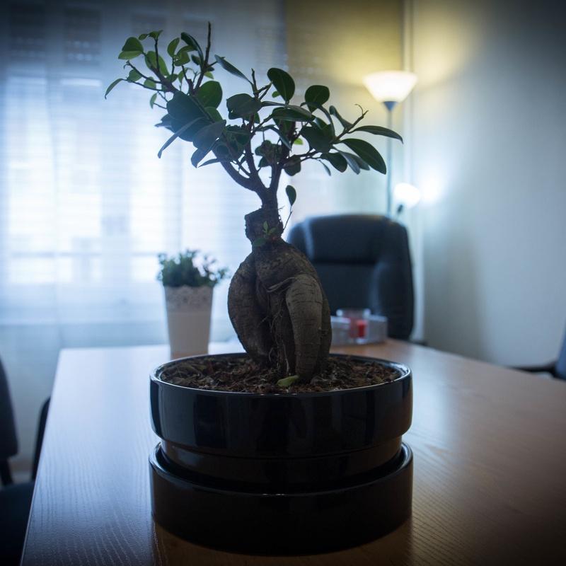 Mindfulness ansiedad Terapia de aceptación Compromiso terapias contextuales: Servicios de Psicóloga Marisa Bresó  Terapia Aceptación y Compromiso  Ansiedad Depresión Valencia