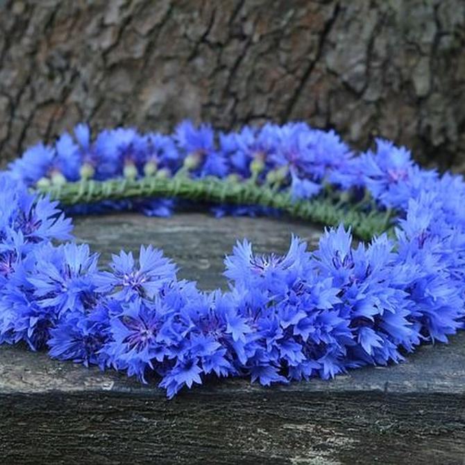 Importancia y significado de la corona funeraria
