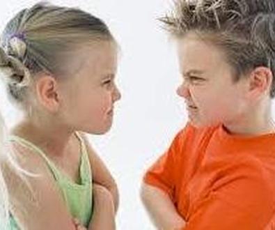 Control de la ira palma de mallorca