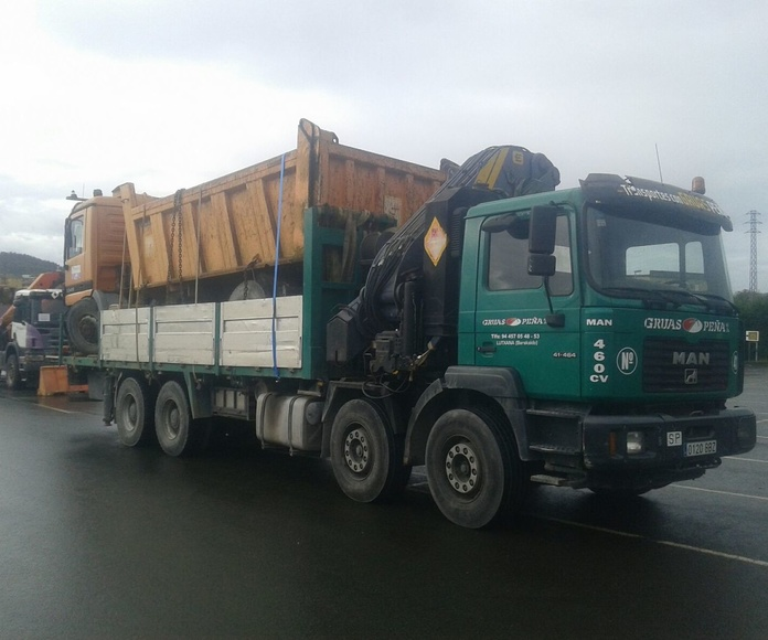Traslado de maquinaria y trabajos camion grua: Servicios de Camiones con Grúas Peña