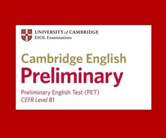 ENGLISH FOR LATE-TEENS. INGLÉS 14-16 AÑOS: Cursos de Oxford School of English