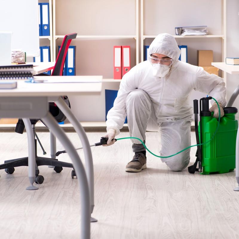 Limpiezas de oficina: Limpiezas en general de Limpiezas Lipamas