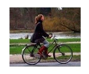 Bicicletas paseo-recreo
