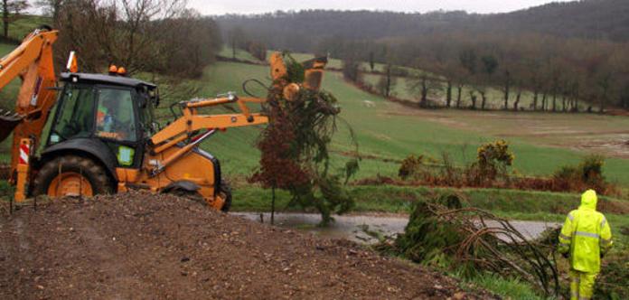 Excavaciones: Servicios de Jardinería Roberto