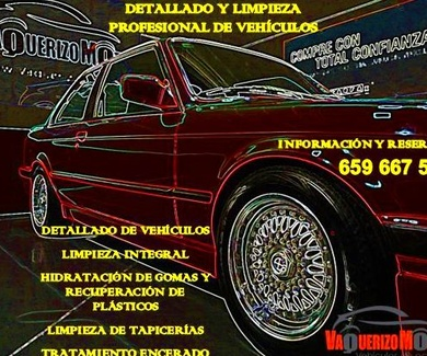 Limpieza tapicería coche en Alcalá de Henares
