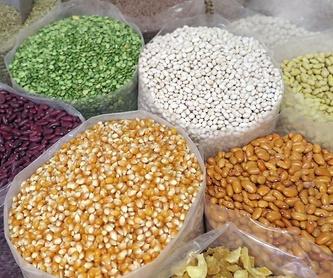 Venta de productos fitosanitarios: Nuestros productos de FITOPALMA, S.L.