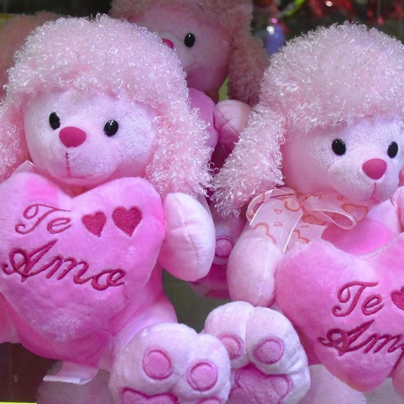 Perrito rosa Te amo: Servicios de Floristería Contreras