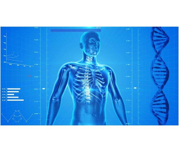 Bioresonància: Centre de fisioteràpia de Innova Fisio