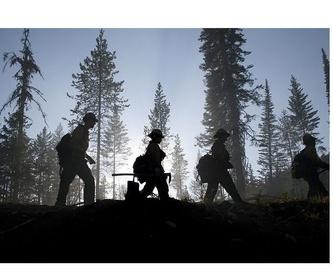 Servicios forestales : Servicios   de Explotaciones Forestales Lagarcía