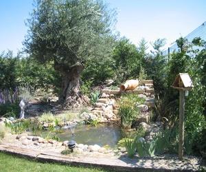 Galería de Jardines (diseño y mantenimiento) en Marcilla | Jardineria El Campillo