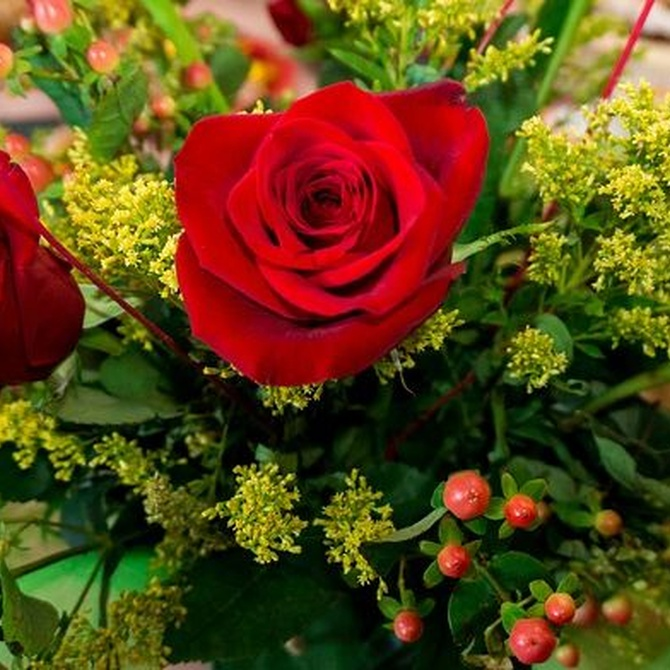 Pide perdón con flores