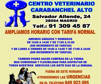 PLANES DE SALUD Y BIENESTAR: Especialidades de Centro Veterinario Carabanchel Alto