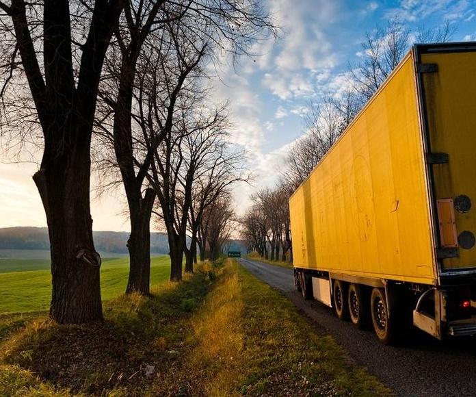 Transporte convencional : Servicios de Levante World Cargo