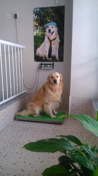 El rey de la clínica