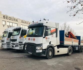 Materiales de construcción en general para albañilería: Servicios de Segura Sarria