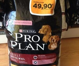 Oferta Pro Plan Adult Original 12 Kg.