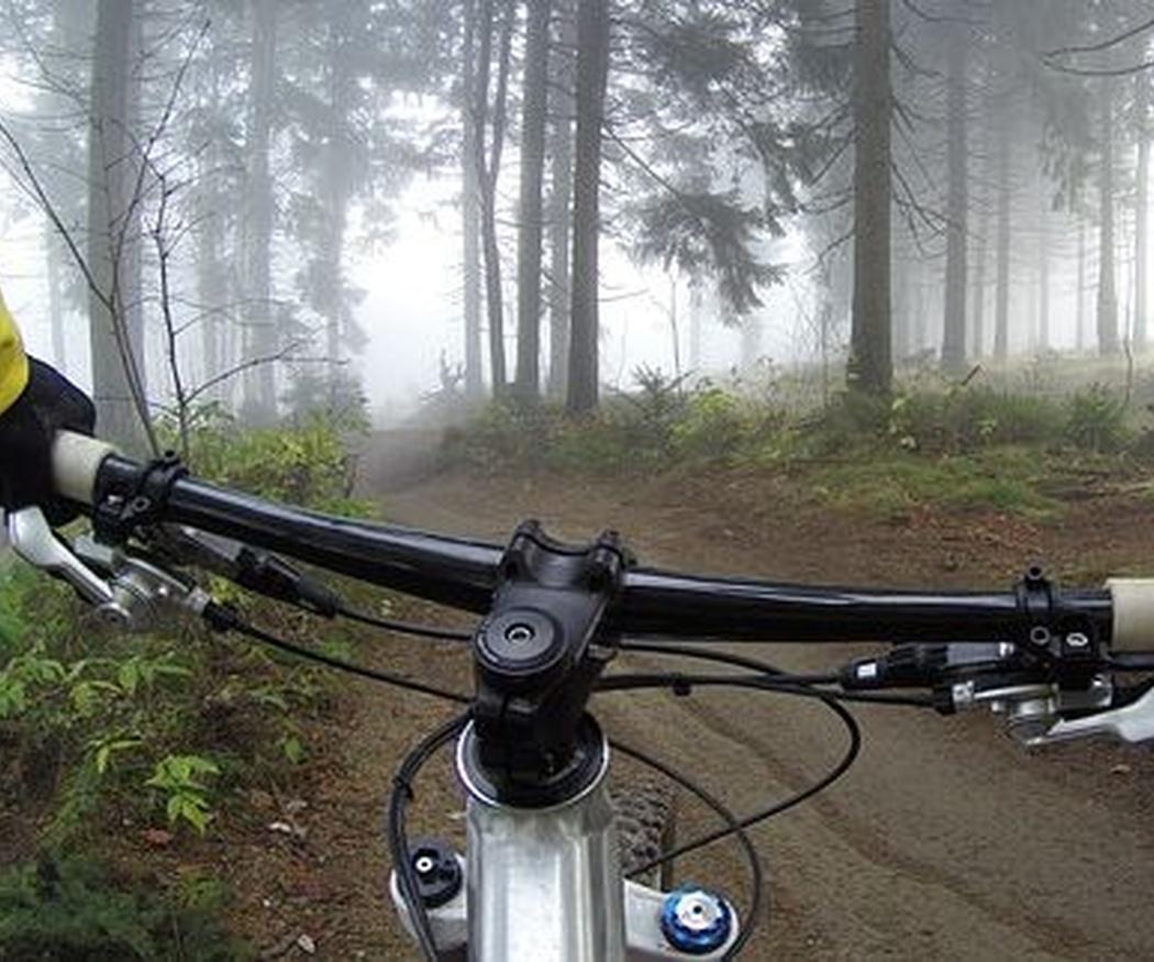 Una bicicleta para cada ocasión