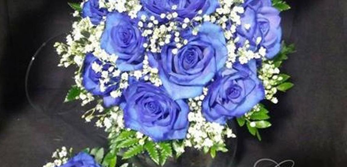 Flores liofilizadas a domicilio en Parla