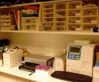 Laboratorio propio: Tratamientos de Clínica Veterinaria Belén Carasa