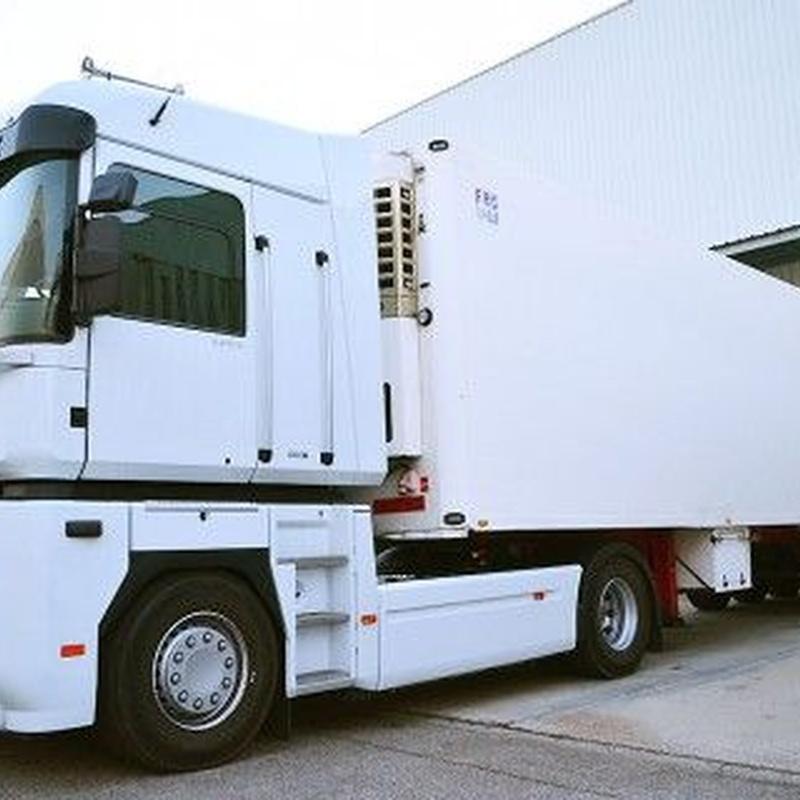 Transporte por carretera: Servicios de Grupo Logístico Castillo