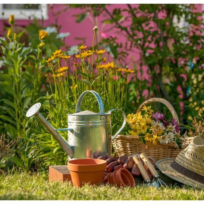 Consejos para mantener la maquinaria de jardinería