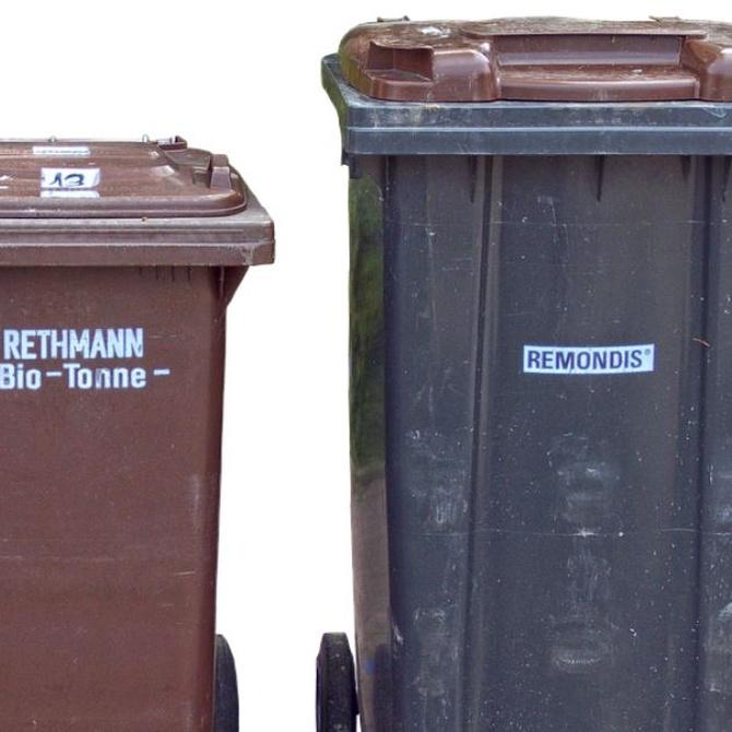 El nuevo cubo marrón de residuos