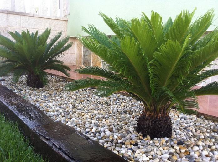 JARDINERIA: Servicios de Jardinería Ártabro