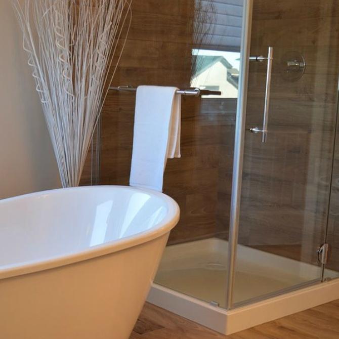 Motivos para sustituir la bañera por una ducha