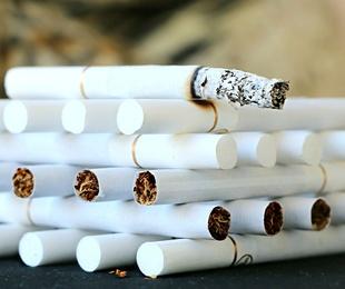Razones del auge del tabaco de liar
