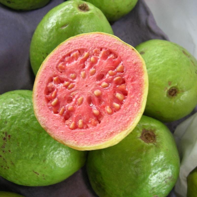Guayaba: Productos de Mundifruit
