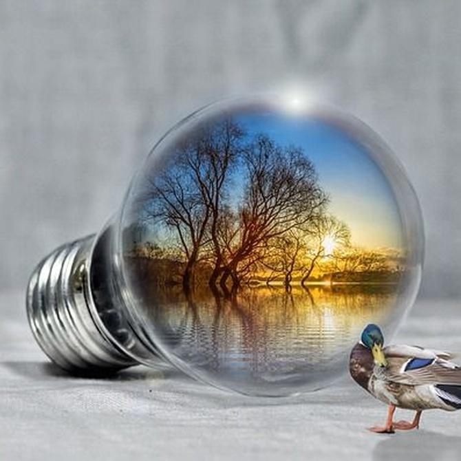 Elegir la energía que renueva tu hogar