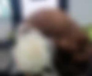 Peluquería de mujer en Móstoles | Navia peluqueros