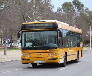 Líneas de autobuses en Valencia