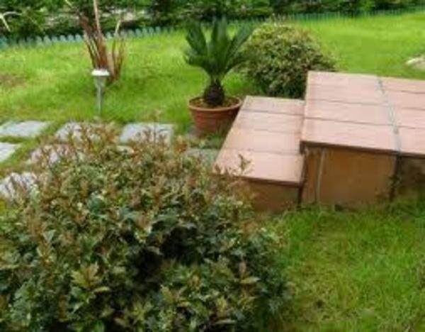 mantenimiento de jardines gijón