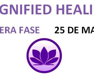 Magnified Healing REUS