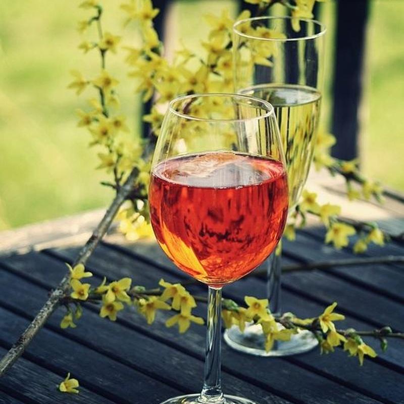Vinos rosados: Carta de Restaurante Kyoto
