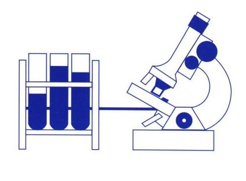 Laboratorios de análisis clínicos en Cartagena | Laboratorio de Análisis de Alfonso Martínez Gómez