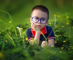 Seis competencias básicas de la educación infantil