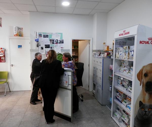 Traumatólogo veterinario en Valencia | Clínica Martín Molina