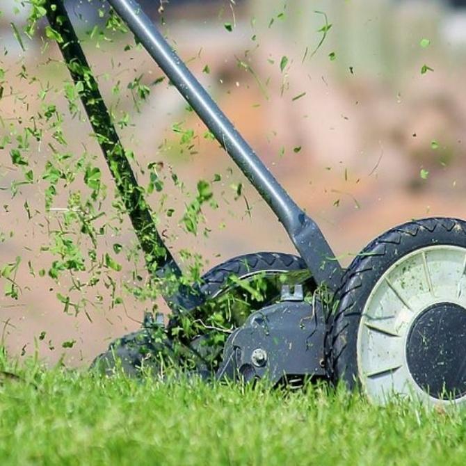 El cortacésped perfecto para tu jardín