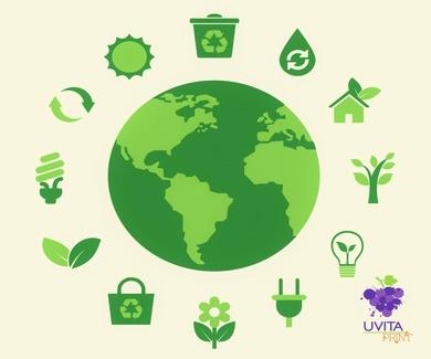 Responsabilidad Social Empresarial en Uvita Print