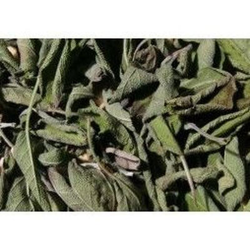 Salvia seca Ref 5 Medicinales