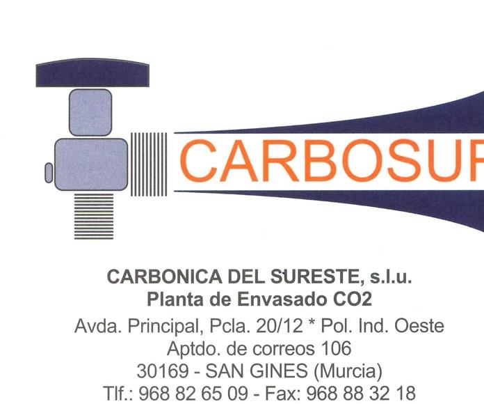 Dióxido de Carbono Alimentario (E-290): Productos de Disgasin, S.L.