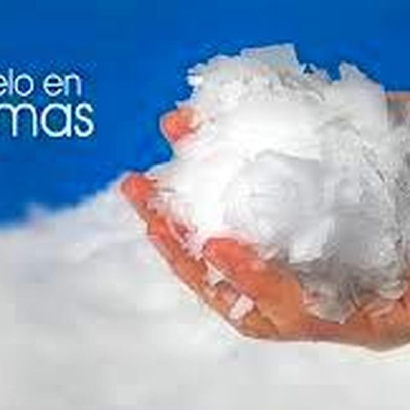 Hielo en escamas: Productos y servicios de Hielos Alvarado